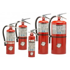 Regular Dry Chemical Fire Extinguishers