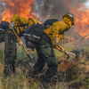firefighters in crewboss garments putting out wildfires