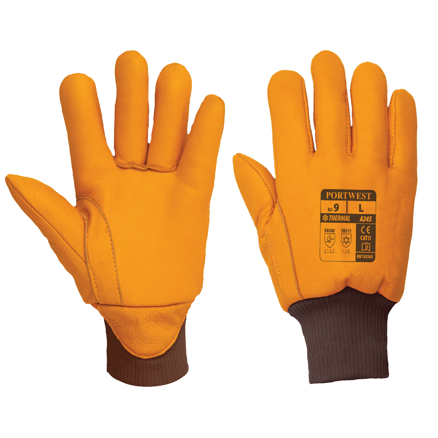 portwest a245 Antarctica gloves